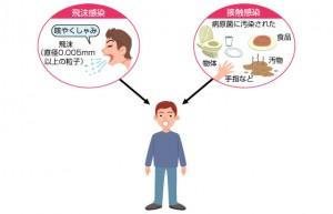 インフルエンザ感染経路
